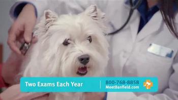 Banfield Pet Hospital TV Spot, 'Molly: Free Exam' - Thumbnail 5