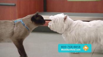 Banfield Pet Hospital TV Spot, 'Molly: Free Exam' - Thumbnail 7