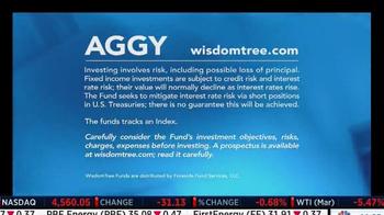 WisdomTree TV Spot, 'AGGY' - Thumbnail 5