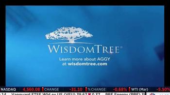 WisdomTree TV Spot, 'AGGY' - Thumbnail 4