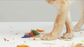 Bissell TV Spot, 'Pet Happens: Frosting' - Thumbnail 1