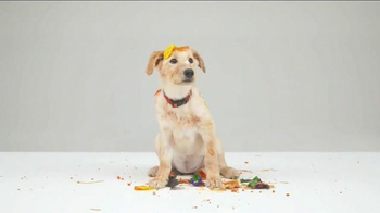 Bissell TV Spot, 'Pet Happens: Frosting' - Thumbnail 4
