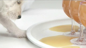 Bissell TV Spot, 'Pet Happens: Puppy Meets Gravy' - Thumbnail 1