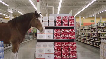 Budweiser Super Bowl 2016 Teaser, 'Act Like It: Clydesdale Beer Run' - Thumbnail 8