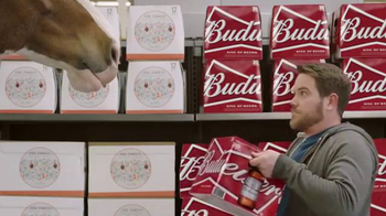 Budweiser Super Bowl 2016 Teaser, 'Act Like It: Clydesdale Beer Run' - Thumbnail 7