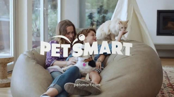 PetSmart TV Spot, 'Chico & Bailey: Cat Food' Song by Queen - Thumbnail 8
