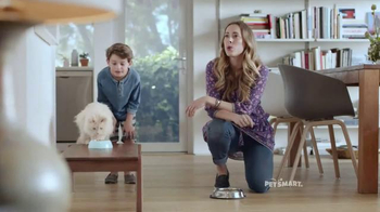 PetSmart TV Spot, 'Chico & Bailey: Cat Food' Song by Queen - Thumbnail 3