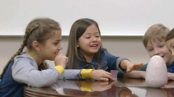 Hatchimals TV Spot, 'Focusing on Hatchimals' - 10 commercial airings