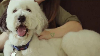 PetSmart TV Spot, 'Nulo MedalSeries' Feat. Carly Patterson, Song by Queen - 636 commercial airings