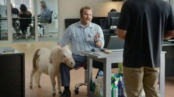 TD Ameritrade In-App Chat TV Spot, 'Comfort Pony'