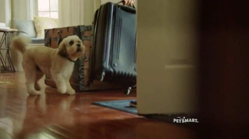 PetSmart TV Spot, 'Outside' Featuring Charlie White, Song by Queen - Thumbnail 6