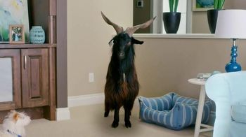 Febreze Fabric Refresher & Pluggables TV Spot, 'Does Your Room Stink?'