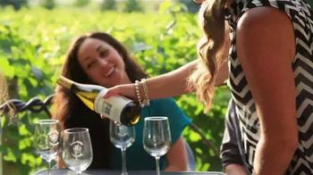 Traverse City Tourism TV Spot, 'Fall Wine Tours' - Thumbnail 9