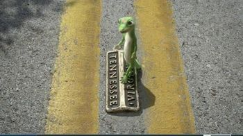 GEICO TV Spot, 'Gecko Journey: Virginessee' - 8016 commercial airings