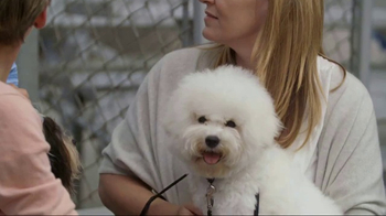 American Kennel Club TV Spot, 'The Right Breed' - Thumbnail 2