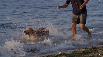 American Kennel Club TV Spot, 'The Right Breed' - Thumbnail 6