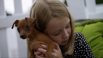 American Kennel Club TV Spot, 'The Right Breed' - Thumbnail 7