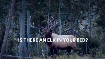 Sleep Number TV Spot, 'Elk in Your Room: Queen Mattresses'