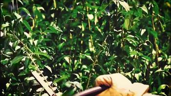 STIHL TV Spot, 'Pick Your Power: Hedge Trimmer' - Thumbnail 5