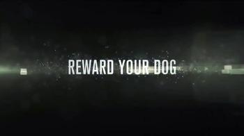 Reward Your Dog thumbnail