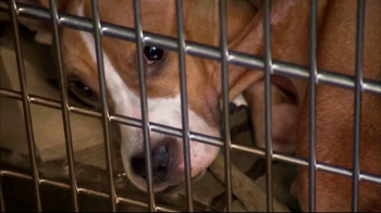 ASPCA TV Spot, 'Locked in a Cage' - Thumbnail 2
