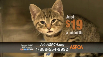 ASPCA TV Spot, 'Locked in a Cage' - Thumbnail 3