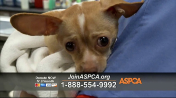 ASPCA TV Spot, 'Locked in a Cage' - Thumbnail 4