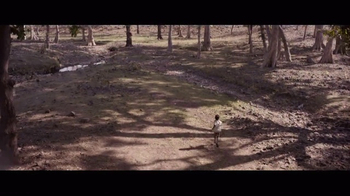 Lion - Alternate Trailer 42