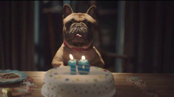 Amazon Echo TV Spot, 'Alexa Moments: The Old Dog' - 1069 commercial airings