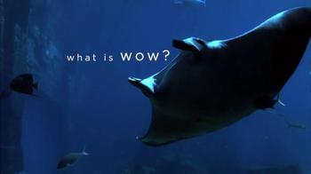Atlantis TV Spot, 'What Is Wow: Manta Ray'