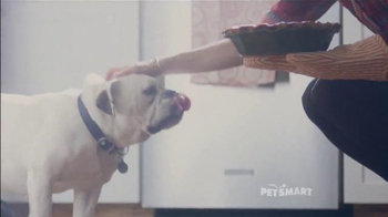 PetSmart TV Spot, 'Bonus Bucks' Song by Queen - Thumbnail 2