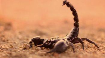 Ted Cruz for President TV Spot, 'Scorpion' - 1 commercial airings