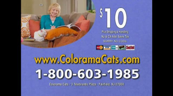 Colorama Books Cats & Kittens TV Spot, 'Page After Page' - Thumbnail 8