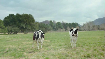 Chick-fil-A Catering TV Spot, 'Opportune Moment for the Cows' - Thumbnail 2