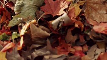 WeatherTech TV Spot, 'Leaves' - Thumbnail 6
