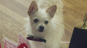 PetSmart November Weekend Sale TV Spot, \'Good Boy\' Song by Queen