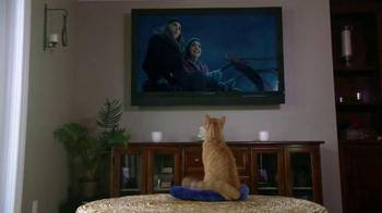HappyisHappy.com TV Spot, 'Christmas Meowvies' - Thumbnail 2