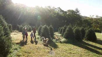Christmas Tree Farm thumbnail