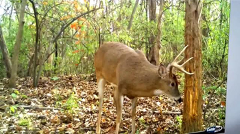 Cuddeback Long Range IR Camera TV Spot, '20 Megapixel Images' - Thumbnail 6
