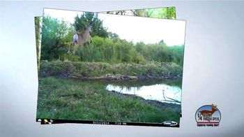 Cuddeback Long Range IR Camera TV Spot, '20 Megapixel Images' - Thumbnail 7