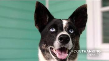 Purina TV Spot, 'How Dogs Show Love' Featuring John O'Hurley - Thumbnail 5