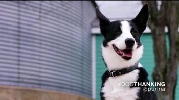 Purina TV Spot, 'How Dogs Show Love' Featuring John O'Hurley - Thumbnail 8