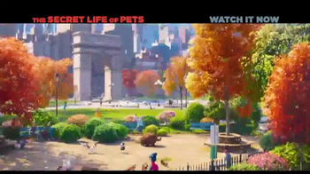 XFINITY On Demand TV Spot, 'The Secret Life of Pets' Song by Macklemore - Thumbnail 1