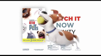 XFINITY On Demand TV Spot, 'The Secret Life of Pets' Song by Macklemore - Thumbnail 10