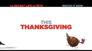 XFINITY On Demand TV Spot, 'The Secret Life of Pets' Song by Macklemore - Thumbnail 2
