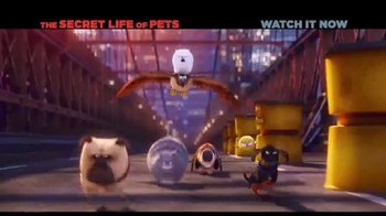 XFINITY On Demand TV Spot, 'The Secret Life of Pets' Song by Macklemore - Thumbnail 4