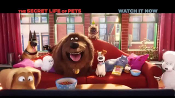 XFINITY On Demand TV Spot, 'The Secret Life of Pets' Song by Macklemore