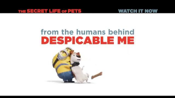 XFINITY On Demand TV Spot, 'The Secret Life of Pets' Song by Macklemore - Thumbnail 8