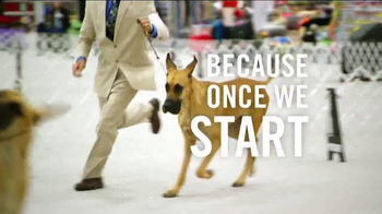 Purina Pro Plan TV Spot, 'Show Dogs'