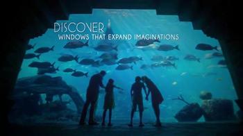 Atlantis TV Spot, 'Holidays: Expand Imaginations' - Thumbnail 1